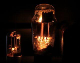 Bulbos del Darkvoice